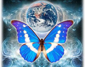 MEMBER ADVERTISING & BLOG FORUMS Earth_butterfly1